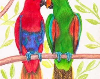 Original watercolor, parrots, macaws, green and Red love on a branch