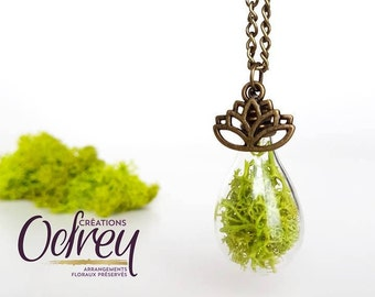 CLEARANCE, terrarium, nature jewelry necklace, Yoga, lichen Moss, forever pendant, lucky charm, rear view mirror Decoration