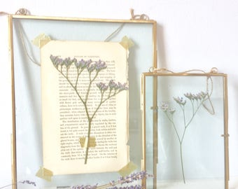 hanging glass specimen frame with sea lavender pressed flowers - small