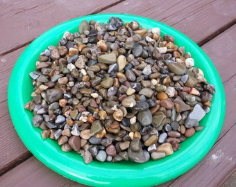 Small River Pebbles in Earth Tones for Terrariums, Craft, Weddings, Fairy gardens and more
