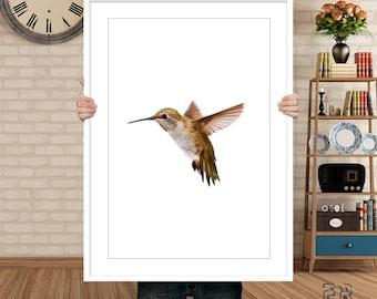 Hummingbird Print, Colibri Print, Hummingbird Art, Hummingbird Wall Art, Bird Print, Colibri Photo, Bird Wall Art, Colibri Poster, Bird Art