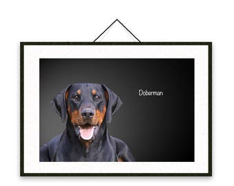 Dobermann - Dog breed poster, wall sticker, nursery decor, wall print, nursery print, shabby print   Tropparoba - 100% made in Italy