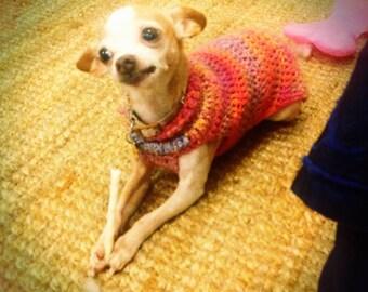 Doggie Crochet Sweater