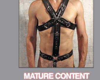 Full body harness CLASSIC-1