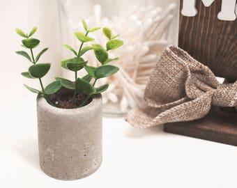 Mini Cement Concrete Succulent Planter