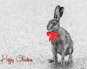Hare Happy Christmas Blan...