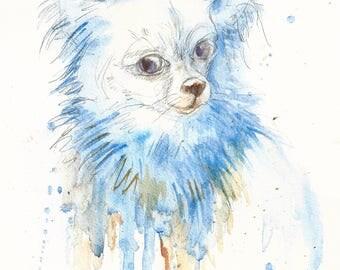 Chihuahua. Mi amor #1