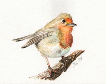 """Original watercolor painting (watercolor) """"Hypocritical Bird"""""""