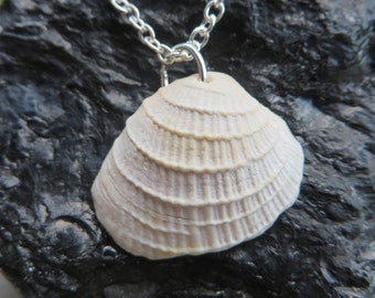 Textured White Shell Necklace