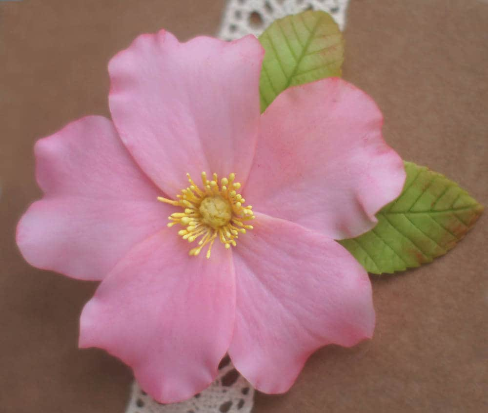Dog Rose Hair Clip Dog Rose Brooch Pink Flower Hair Clip White