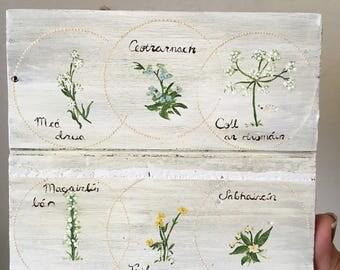 Bláthanna, Flowers as Gaeilge Decor