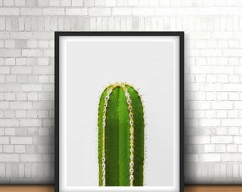 Green Cactus photo print, high resolution, photo prints, digital print, wall art, poster prints, photography poster