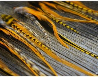 Feather extensions #Orange & yellow # #MINI #