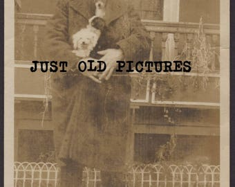 Man with 3 dogs in his coat old vintage photo/snapshot/photograph-e131
