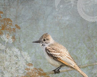 Hope Is The Thing With Feathers - Small Bird with Emily Dickinson Stamp and Fennel, Ash Throated Flycatcher Signed Fine Art Photograph