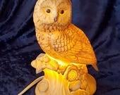 Owl Perfume Fragrance Electric Lamp Vintage