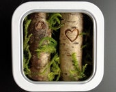 Nature Art, Birch Tree, Gift for Her, Miniature Forest, Gift for Nature-Lover, Love Keepsake, Anniversary Present