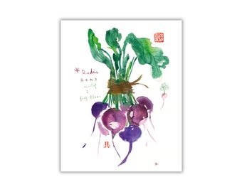Purple radish print, Vegetable poster, Watercolor veggie illustration, Kitchen wall art, Vegetable painting, Food poster, Dining room poster