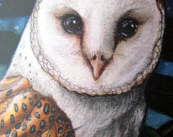 Barn Owl at Night Greeting Card