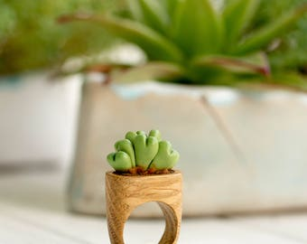 Green Succulent Planter Wooden Ring Wholesale Succulent Arrangement Statement Ring Succulent Jewelry Wedding Bridal Birthday Gifts