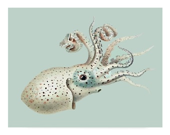 Baby Octopus Nautical Vintage Style Print Beach House Decor Blue Gray Squid
