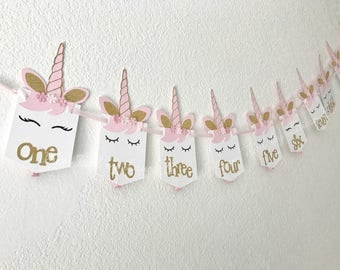Unicorn 1st Birthday Photo Banner Shabby Chic.  First Birthday Decorations.  Monthly Photo Clips.  Unicorn Kisses.