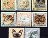 Cat Postage Stamps from Hungary - 1968 - Set of 8 - ATC, Altered Art, Collage, Kids Crafts