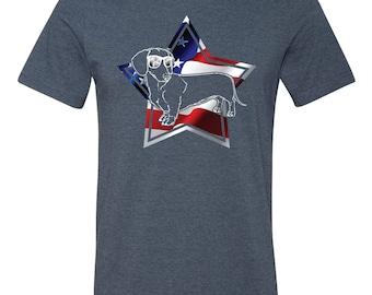 American Dachshund T Shirt, Dog Shirt, 4th of July