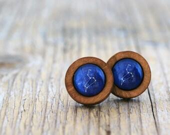 Leo Earrings, Leo Constellation, Zodiac Earrings, Leo Zodiac Earrings, Constellation Earrings, Wooden Earrings, Celestial Zodiac, Space Stud