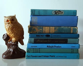 Vintage Decorative Books, Blue, Set of Eight, Hardcover, Bookshelf Decor