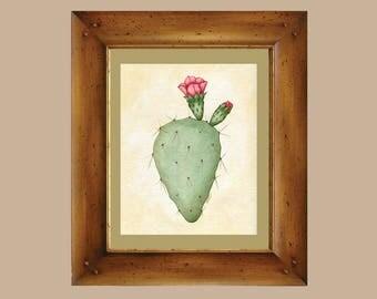 Prickly Pear Cactus in Bloom Arizona Sonoran Desert Cacti Art Print - Scientific Illustration Vintage Inspired Botany Original Art