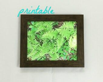 Printable Wall Art, Fern Print, Botanical Print, Instant Download Art, Botanical Wall Art, Plant Print, Christmas Gift, Nature Photography
