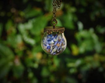 Lavandula * dried Lavender bronze vial terrarium necklace