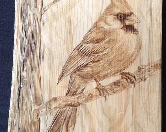 Wood Burning, Pyrography Cardinal on a tree.