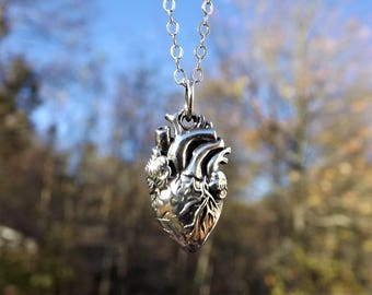 Anatomical Heart Necklace - Sterling Silver Heart - Sterling Anatomical Necklace - Heart Necklace - Realistic Heart