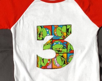 Teenage Mutant Ninja Turtle Number Bday Raglan