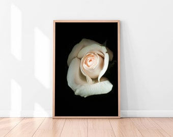 White Roses Wall Art, Floral Printable, Flowers Poster, Roses Art Print, Printable Wall Art, Floral Art Print, Best Selling Items
