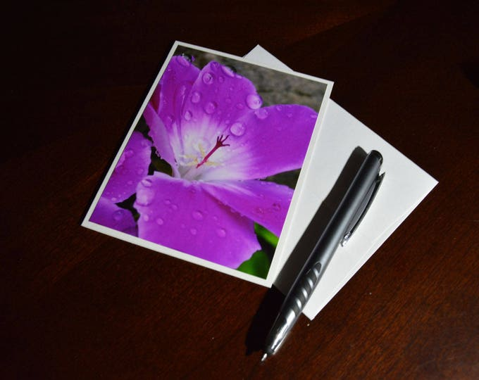 Geranium Photo Greeting Card, Pink Floral, Stigma Reaching
