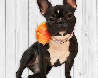 Dog Collar Flower - Orange Flower Collar Add On Accessory - 4 in. dog collar flower - girl dog collar accessory - large dog collar flower