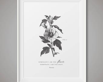 Black and white botanical print - Fig 5
