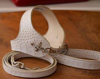 Dog harness, leash, and bon-ton bag in white cocco Italian leather