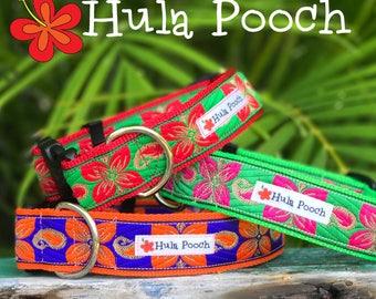 "Dog Collar ""Ala Moana"" Orange Purple Fuchsia Red Green -  Medium, Large, Wide, Adjustable // FREE SHIPPING"