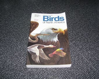 Field Guide to the Birds of North America CLEAN  National Geographic  2nd Ed Pb 1996 Vintage