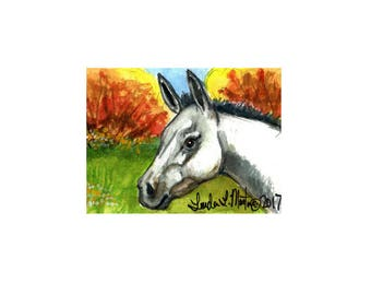 White Autumn Mule llmartin Original ACEO Watercolor Children, Toddler, Nursery Free Shipping USA