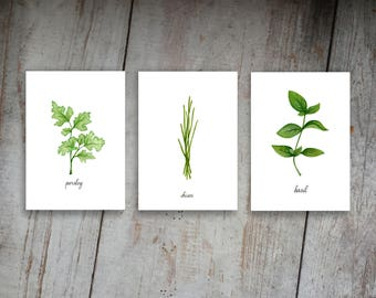 Kitchen Herbs Watercolor Illustration Art Print Set of 3 Option 1