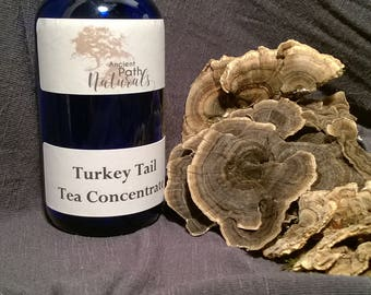 2 oz or 4 oz Turkey Tail Tea Concentrate Super Potent Wild Crafted Foraged Natural Sustainable Organic