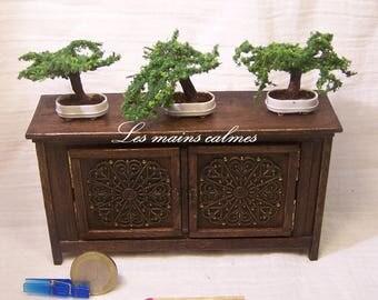 Miniature bonsaï