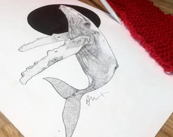 Whale - A4 Print