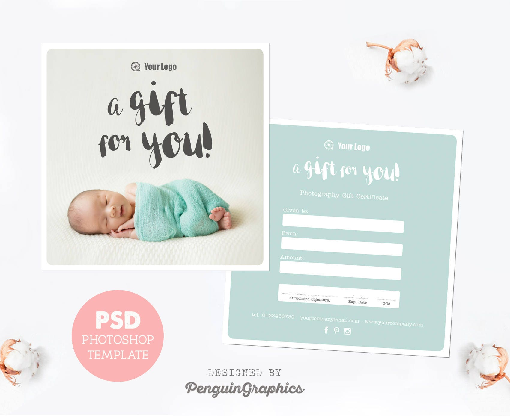 gift certificate template photography mini session gift card. Black Bedroom Furniture Sets. Home Design Ideas