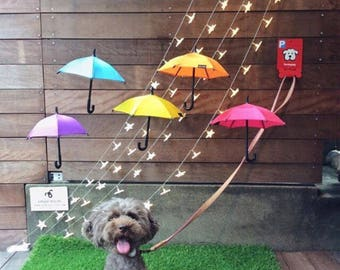 Puppy Parking - Dog Parking